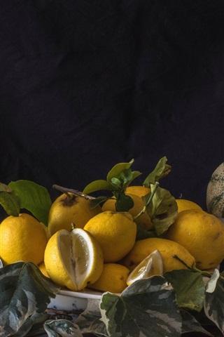 iPhone Wallpaper Some lemons, melon, wisteria, vase