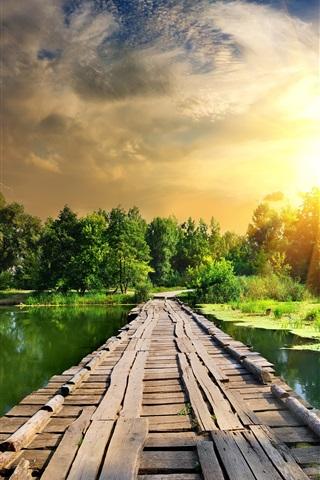 iPhone Wallpaper Summer, river, duckweed, wood bridge, lightning