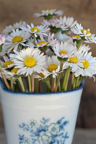 iPhone Wallpaper White flowers, daisy, vase
