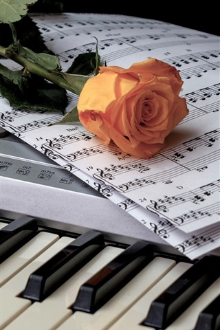 iPhone Wallpaper Wine, piano, music score, rose