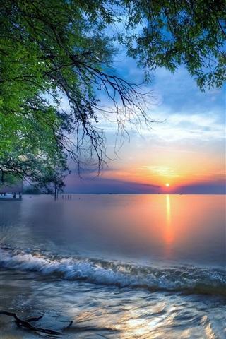 iPhone Wallpaper Austria, Lake Constance, water, trees, sunrise