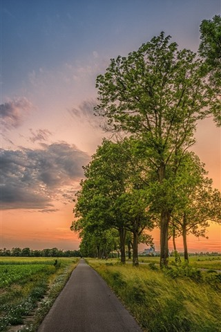 iPhone Wallpaper Beautiful fields, countryside, road, trees, clouds, sunset