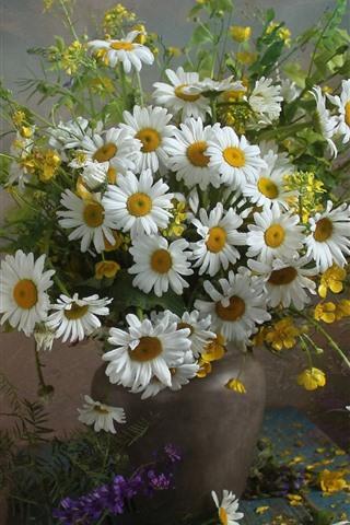 iPhone Wallpaper Chamomile, flowers, bouquet, vase