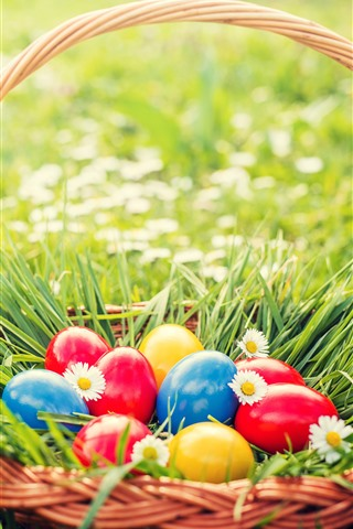 Colorful Eggs Basket Grass Flowers Spring Easter