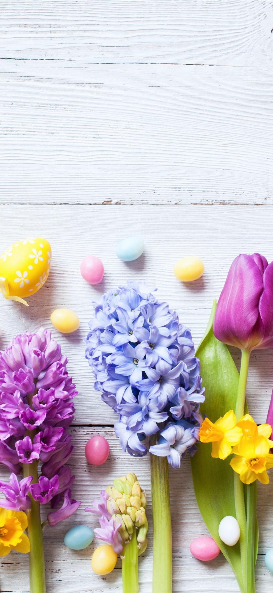 Easter Colorful Flowers Daffodils Tulips Hyacinth Eggs