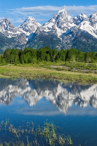 iPhone Wallpaper Grand Teton National Park, Rocky mountains, trees, river, water reflection