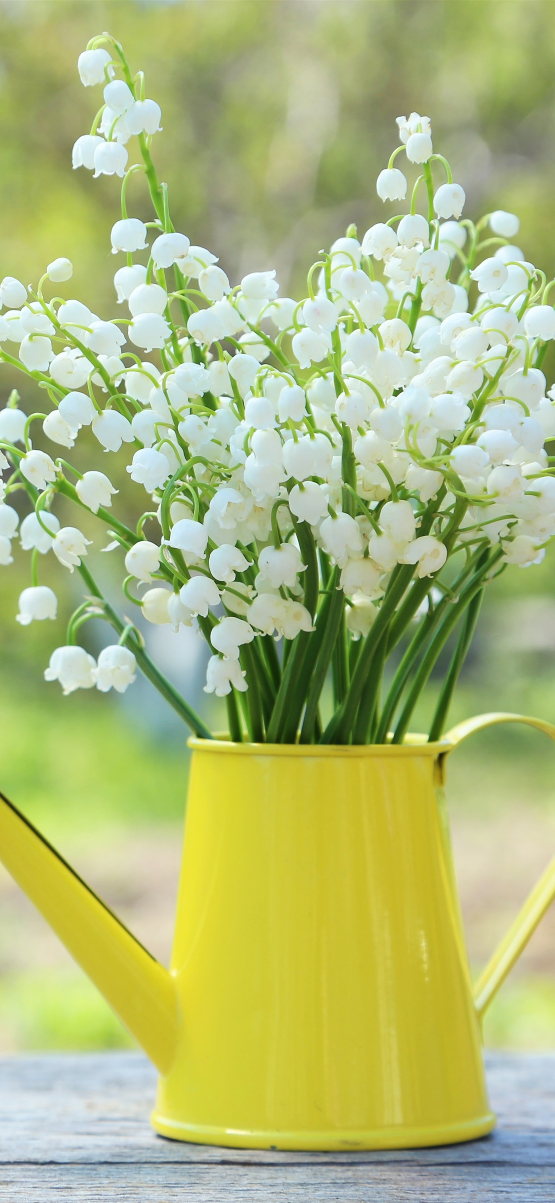 Wallpaper Lilies Of The Valley Spring Flowers Kettle 3840x2160
