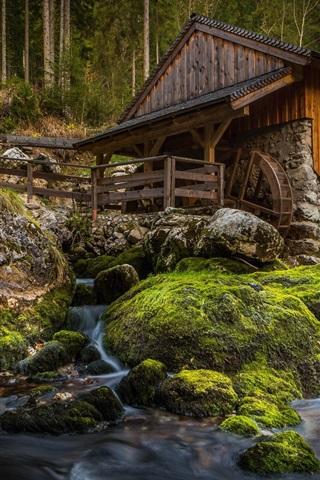 iPhone Wallpaper Mill, stones, moss, creek, forest
