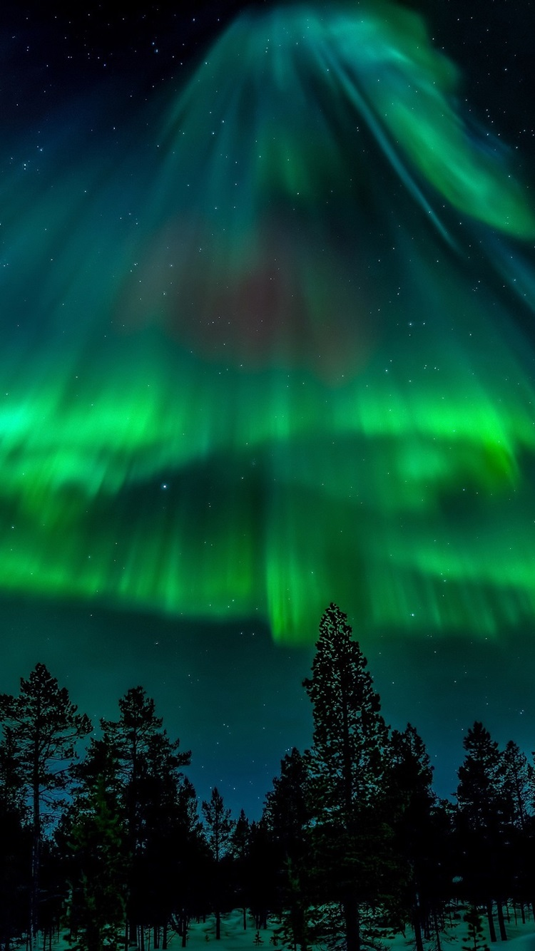 Northern Lights Stars Forest Night 750x1334 Iphone 8 7 6