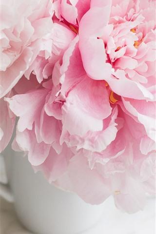 iPhone Wallpaper Pink peonies, cup