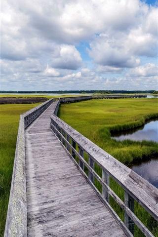 iPhone Wallpaper Swamp, grass, water, bridge