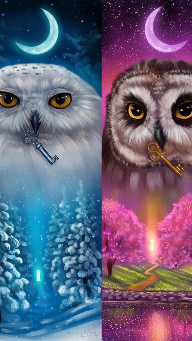Colorful Owls Four Season Art Picture 640x1136 Iphone 5 5s