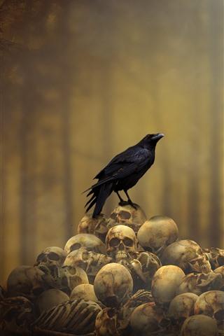 iPhone Wallpaper Crow, skulls