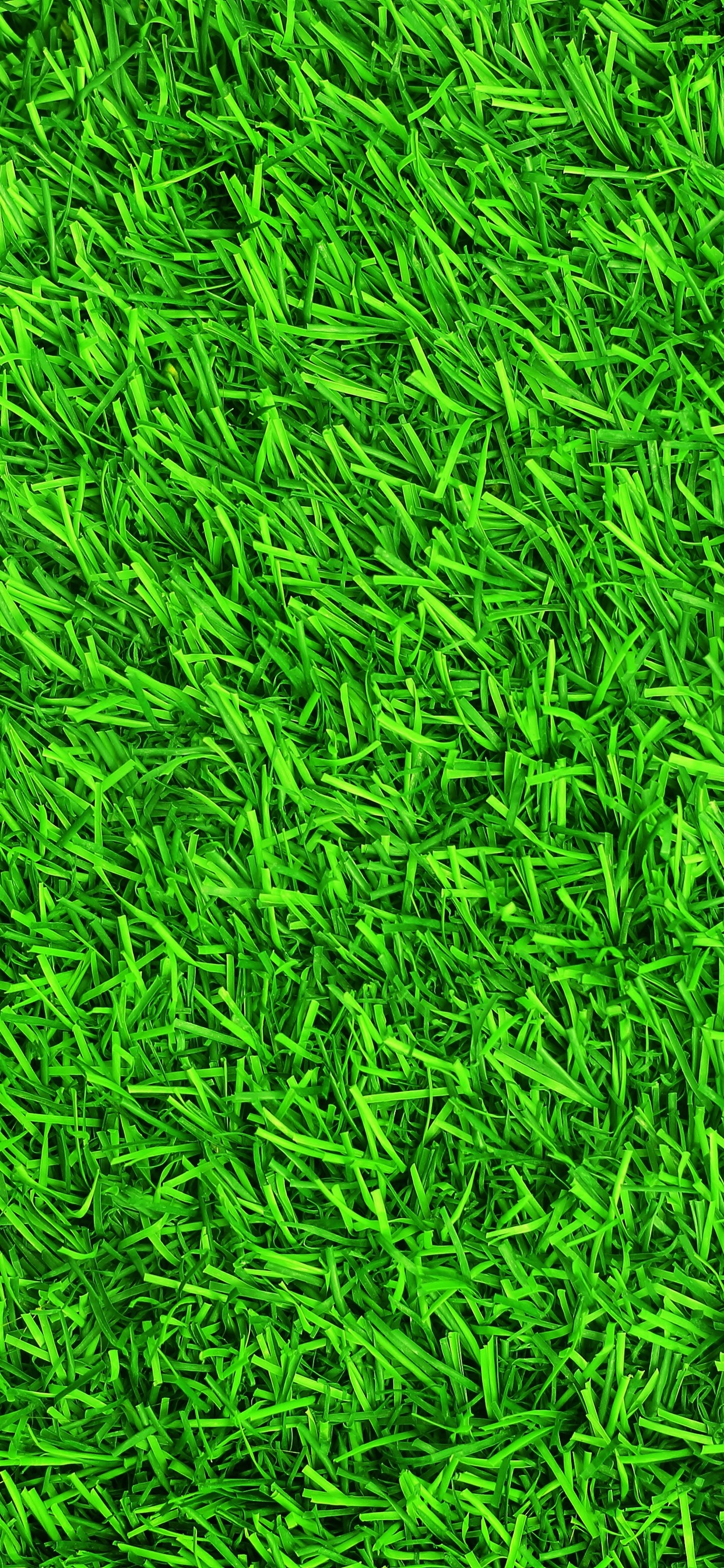 Green Grass Meadow Summer 1242x2688 Iphone Xs Max Wallpaper