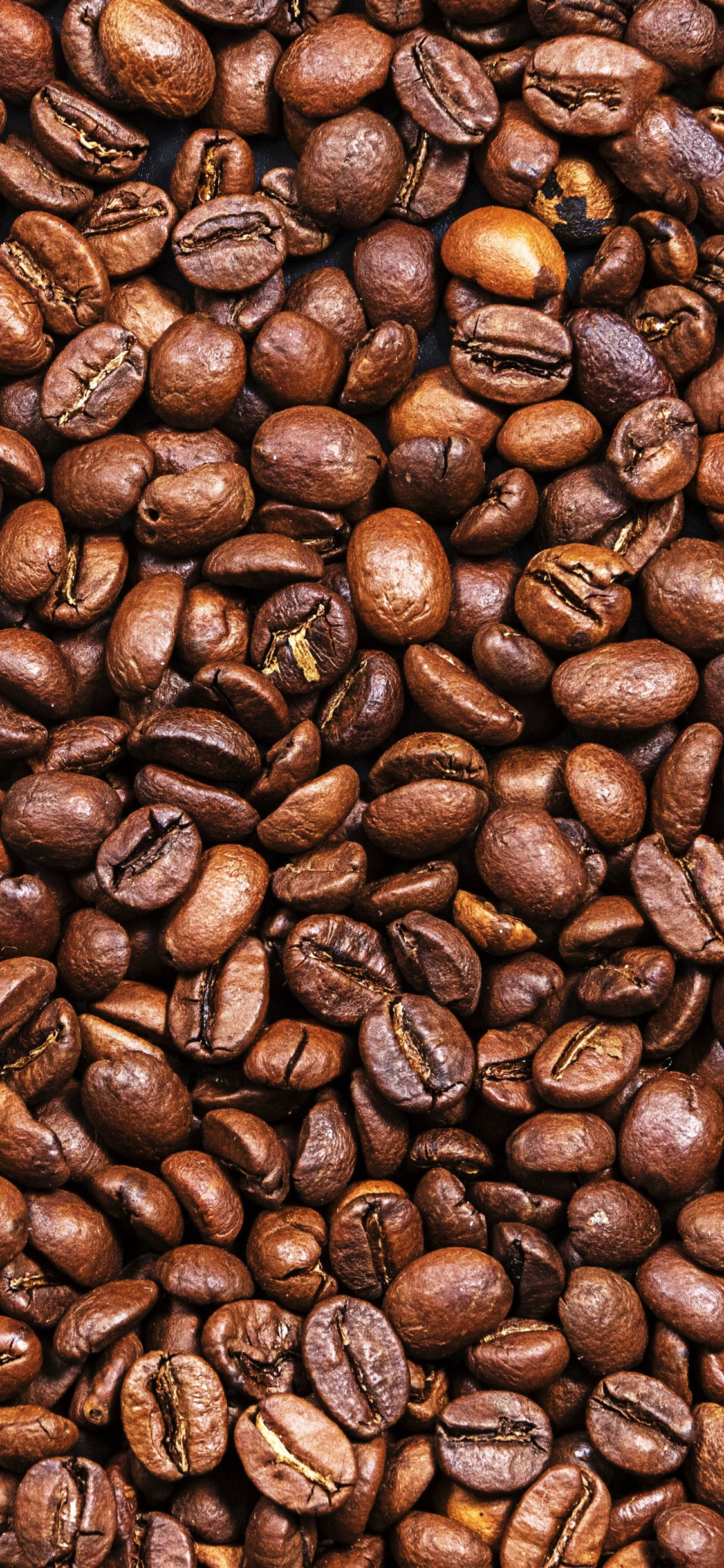 Many Coffee Beans Texture Background 1125x2436 Iphone Xs X