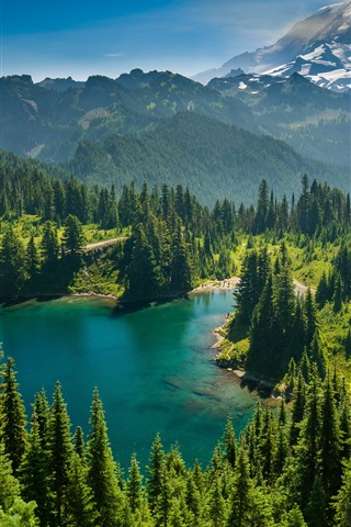 iPhone Wallpaper Mount Rainier, Eunice Lake, Washington State, USA, trees, nature