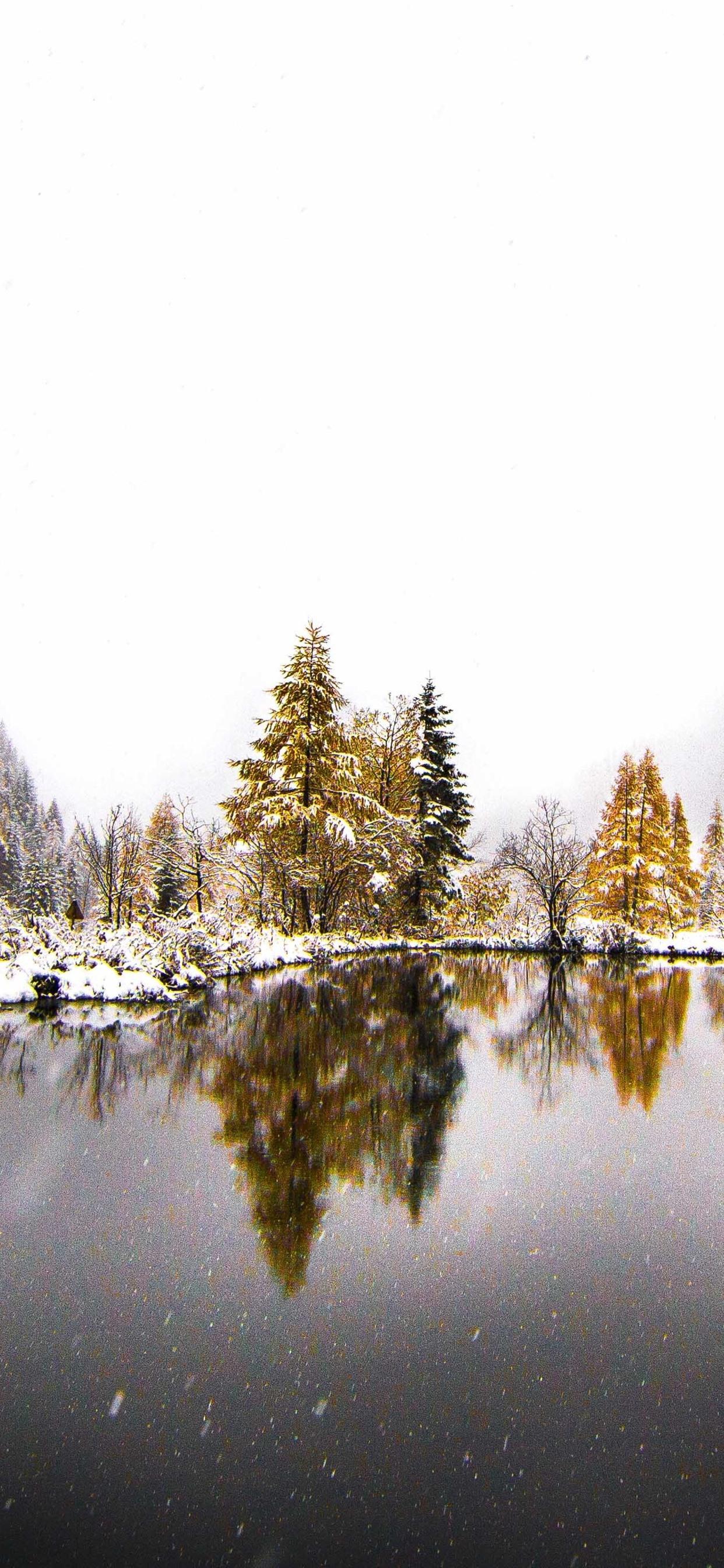 Mountains Trees Lake Snow Winter Fog 1242x2688 Iphone