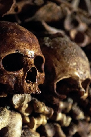 iPhone Wallpaper Skulls, bones, horror