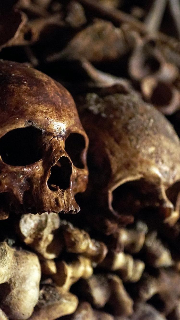 Skulls Bones Horror 750x1334 Iphone 8 7 6 6s Wallpaper Background Picture Image