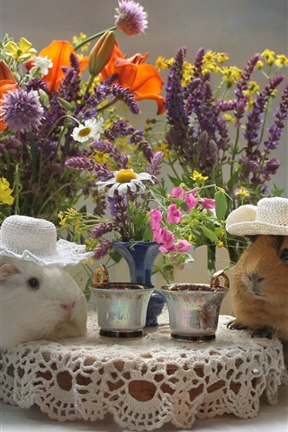 iPhone Wallpaper Two guinea pigs drink coffee, funny animal, flowers