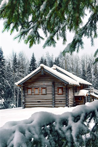 iPhone Wallpaper Winter, snow, pine trees, wood house