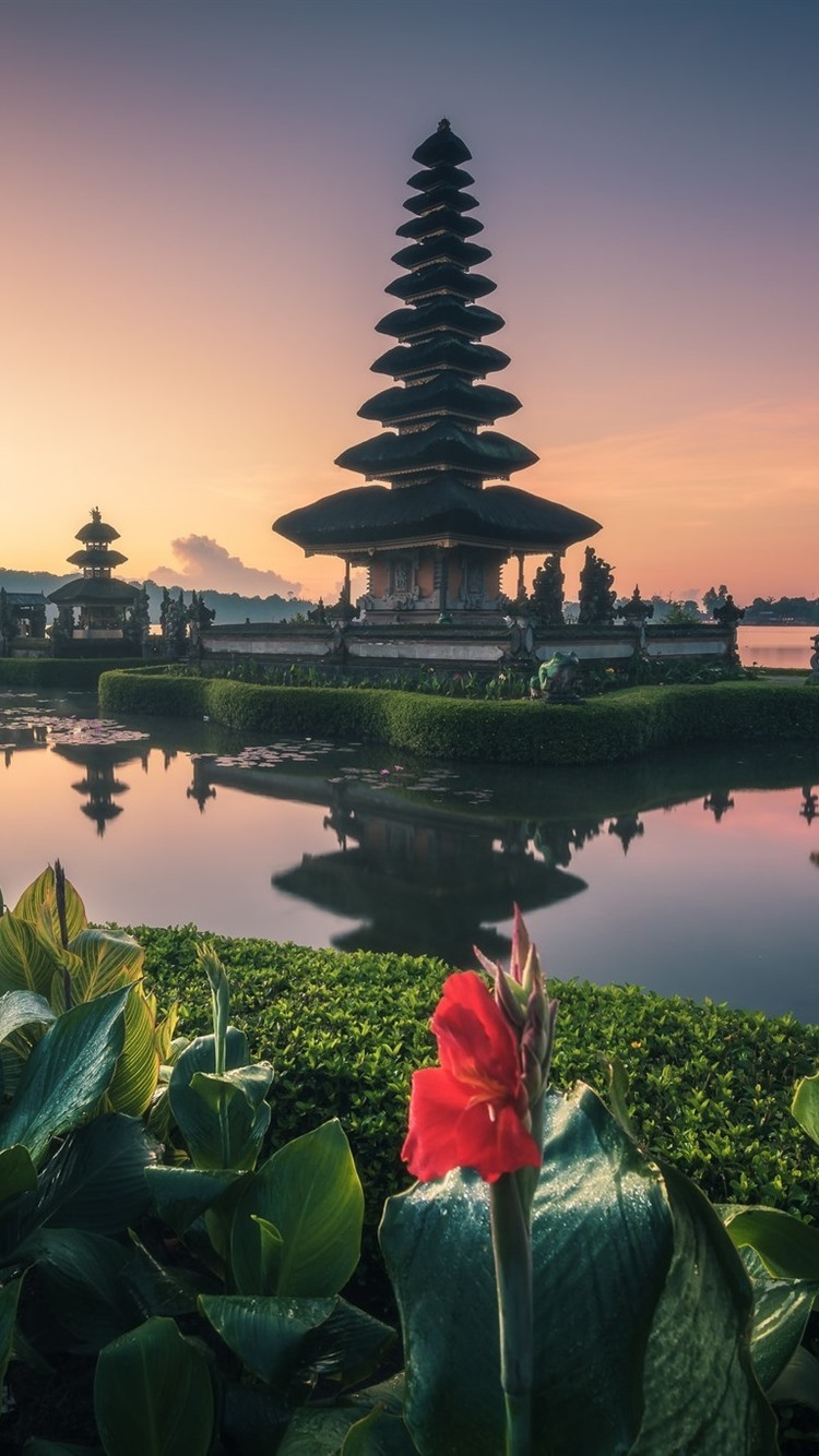 Bali Temple Lake Flowers Indonesia 750x1334 Iphone 8 7 6 6s Wallpaper Background Picture Image