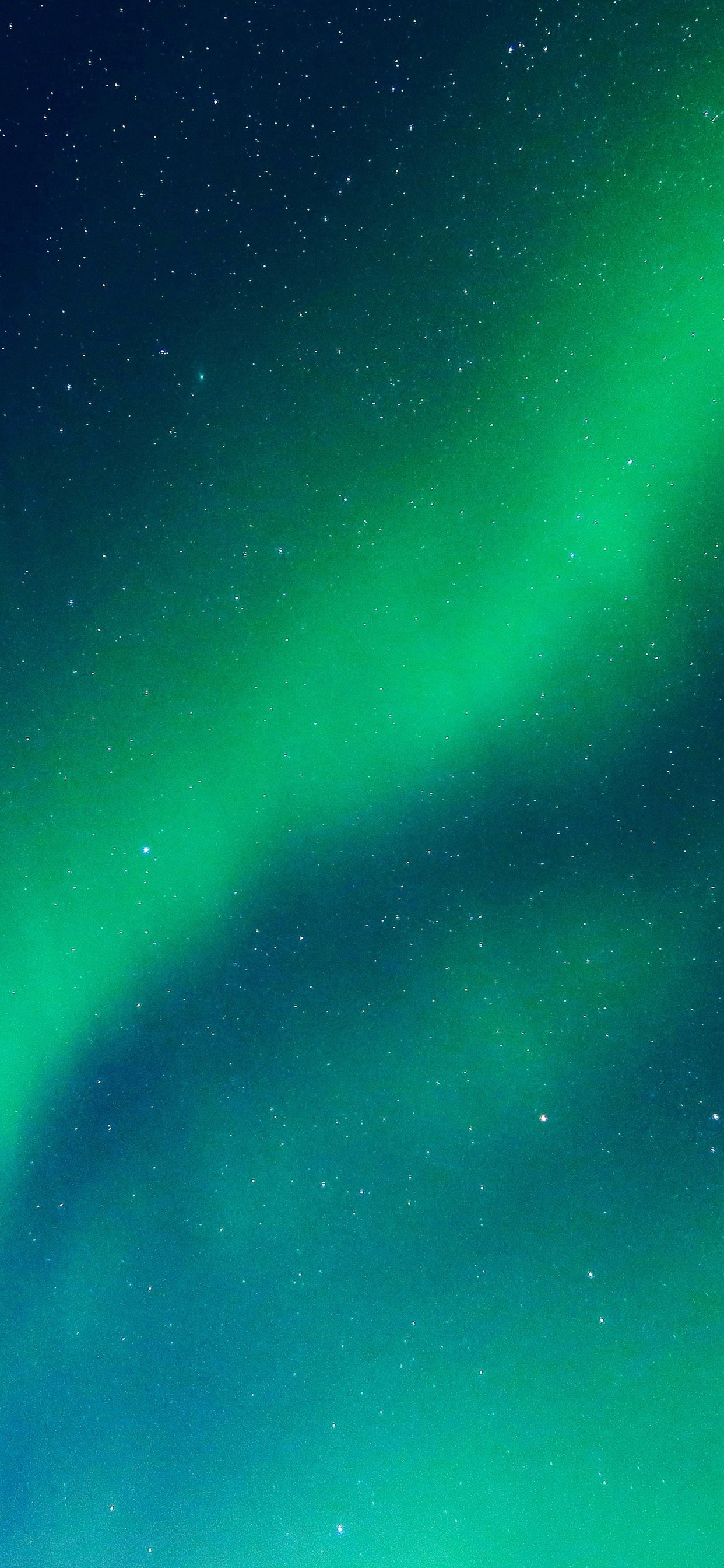 Beautiful green northern lights, starry