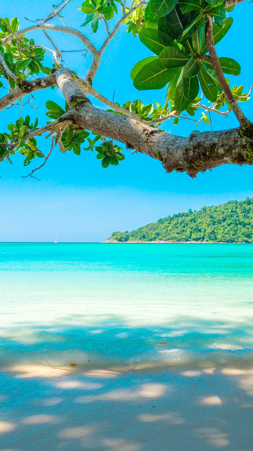 Beautiful Sea Beach Tree Tropical 1242x2688 Iphone 11 Pro Xs Max Wallpaper Background Picture Image