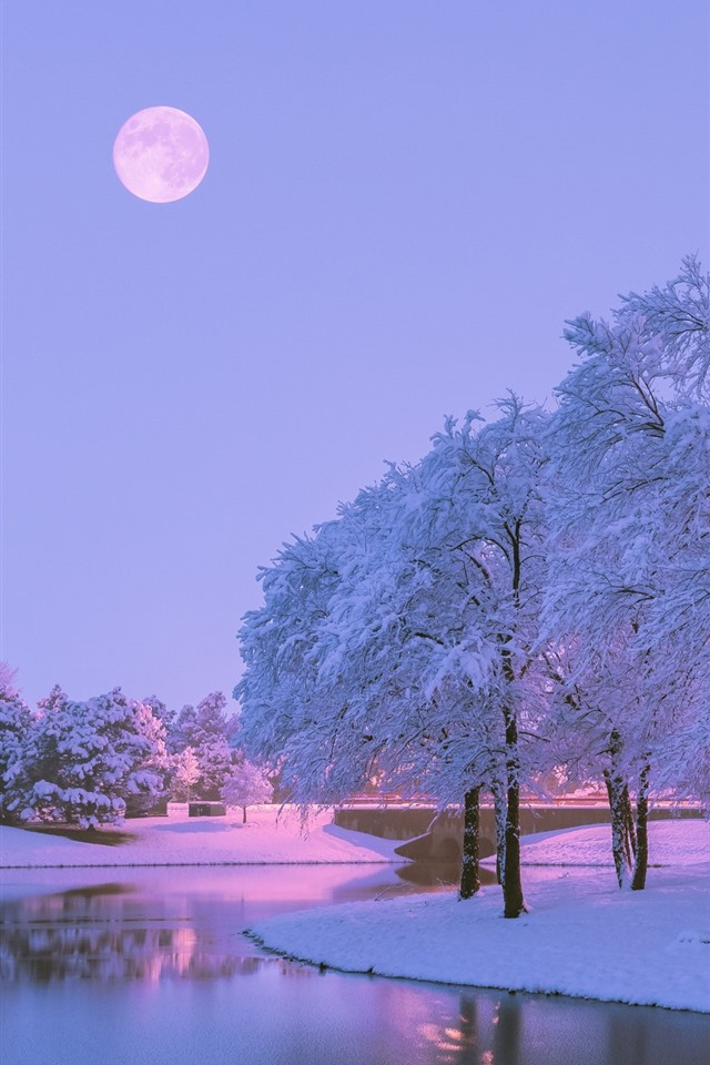 Image%20result%20for%20beautifulwinter