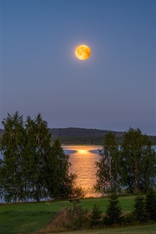 iPhone Wallpaper Finland, lake, hut, trees, moon