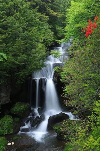 iPhone Wallpaper Japan, Honshu, Nikko National Park, waterfall, creek