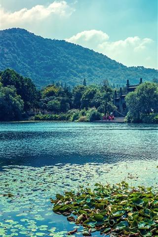 iPhone Wallpaper Lake, boat, water lily, trees, park, China