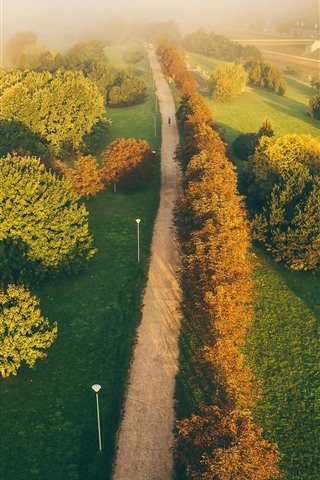 iPhone Wallpaper Lithuania, Kaunas, road, trees, fog, top view