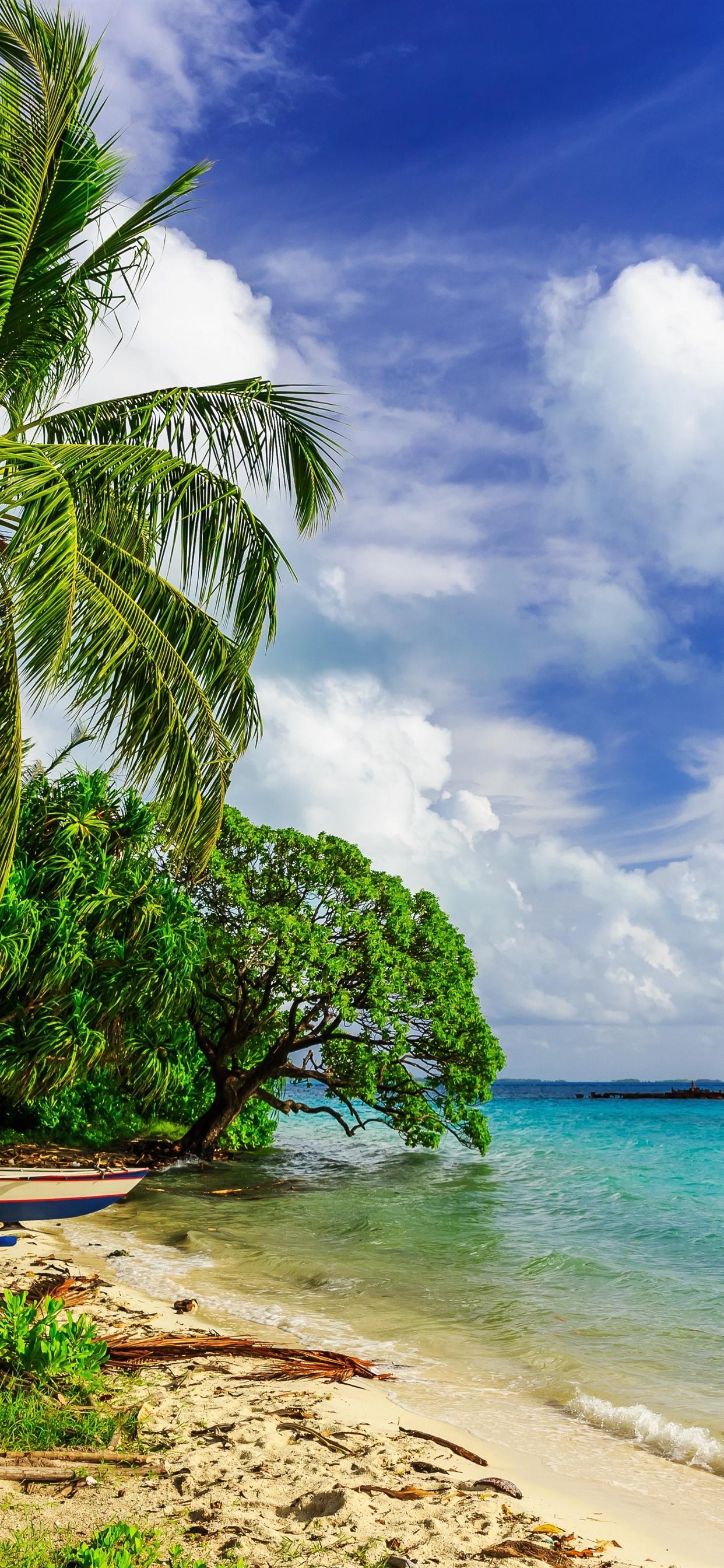 Paradise Tropical Palm Trees Sea Beach Clouds 1242x2688