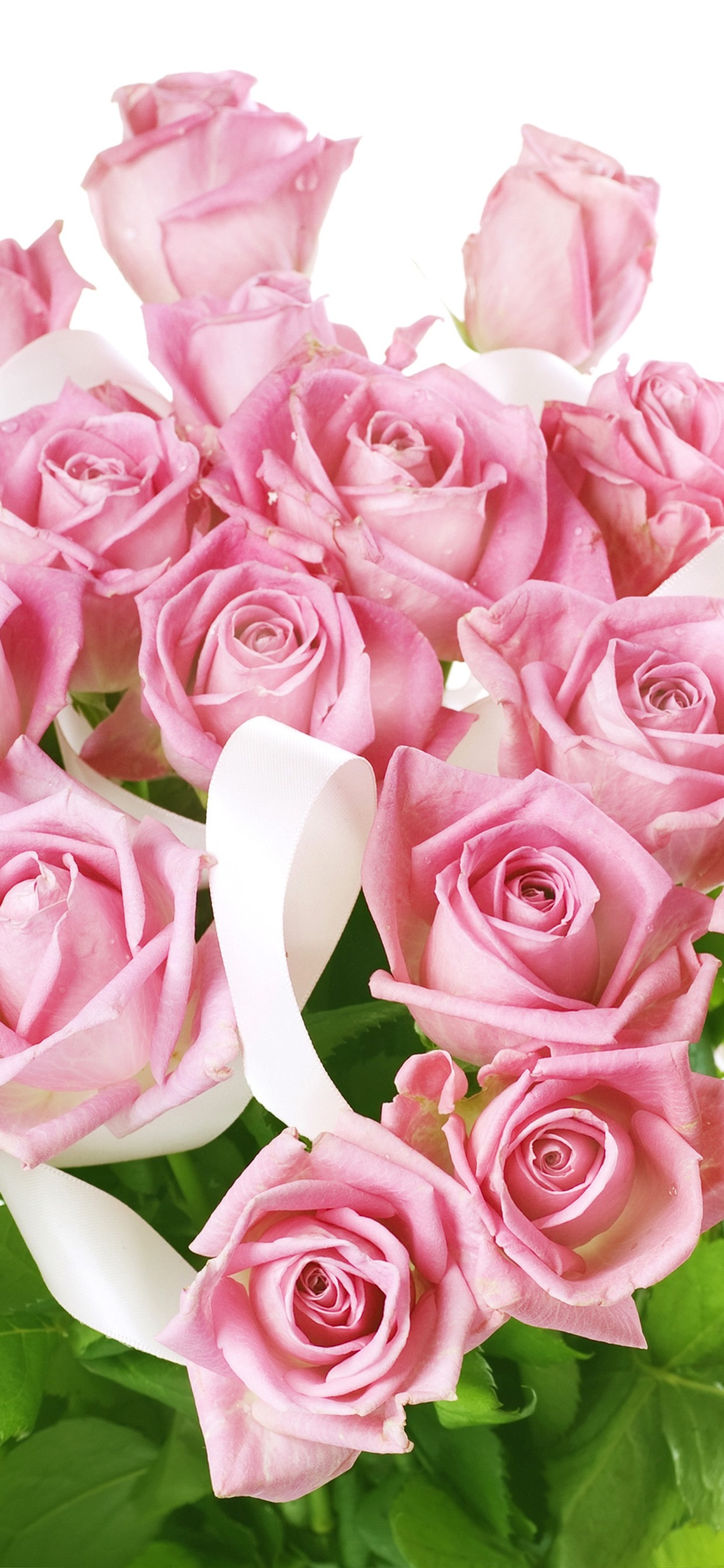 Pink Roses Bouquet White Background 1242x2688 Iphone Xs Max