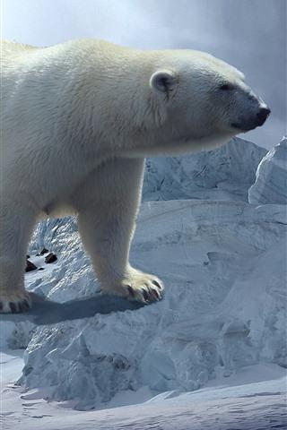 iPhone Wallpaper Polar bear, snow, iceberg