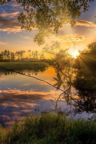 iPhone Wallpaper Sunset scenery, trees, grass, river, sunshine