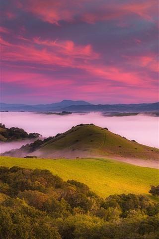 iPhone Wallpaper USA, mountains, trees, fog, dawn