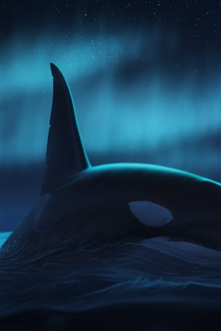iPhone Wallpaper Whale, northern lights, night, sea, art picture