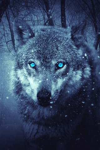 iPhone Wallpaper Wolf, blue eyes, snowy, winter, forest