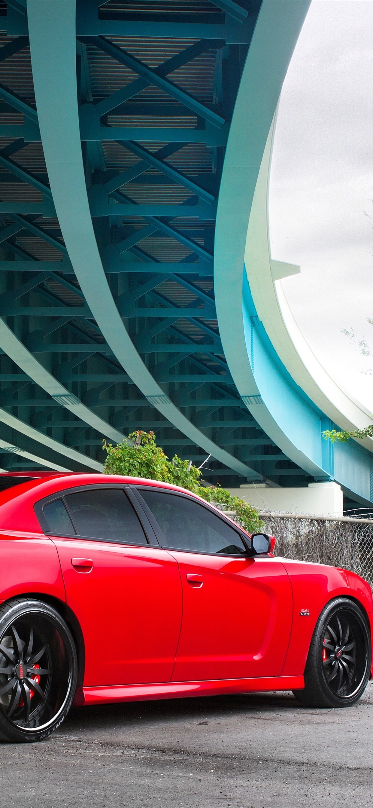 Dodge SRT8 red car 1242x2688 iPhone 11