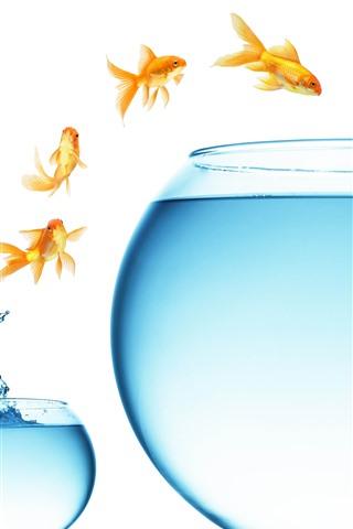 iPhone Wallpaper Goldfish jumping, big and small glass fish tank, water