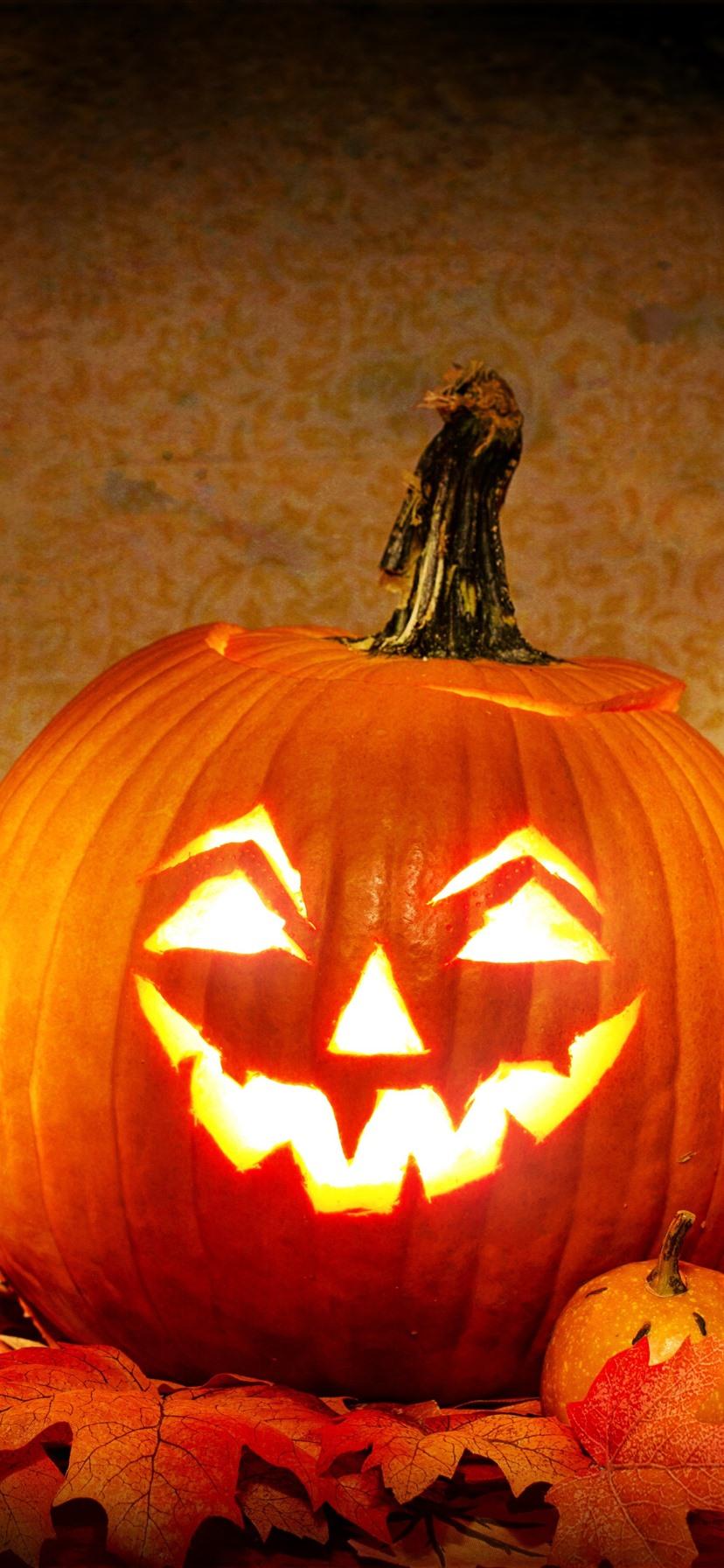 Halloween Pumpkin Bat Cat Lantern 1242x2688 Iphone 11 Pro Xs Max Wallpaper Background Picture Image