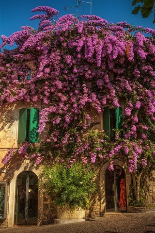 iPhone Wallpaper Italy, Lombardy, Sirmione, city, street, purple flowers