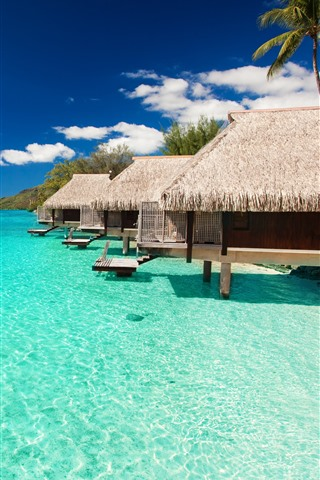 iPhone Wallpaper Maldives, bungalows, blue sea, resort, tropical