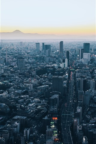 Minato Japan Skyscrapers City Dusk 1242x2688 Iphone 11 Pro Xs Max Wallpaper Background Picture Image