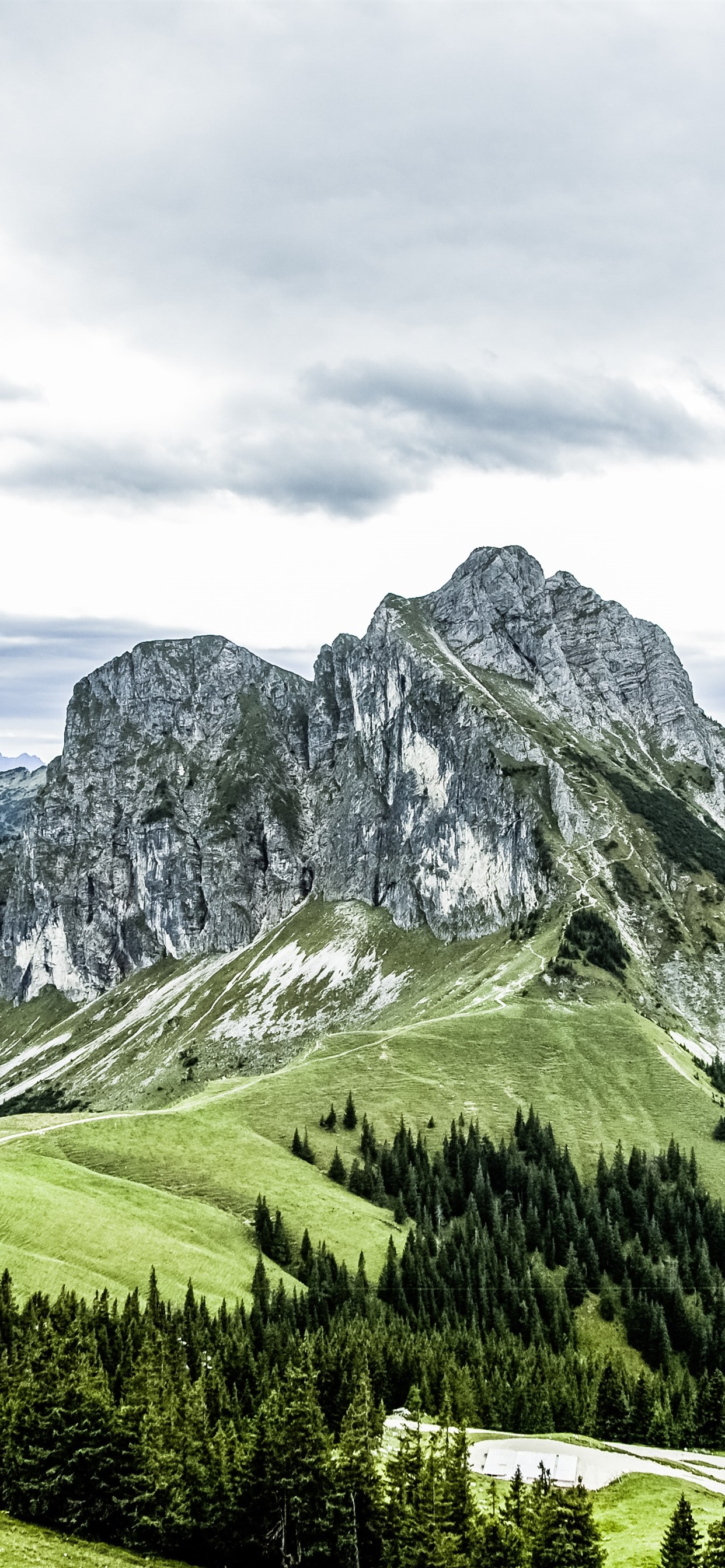 Mountains Path Trees Green Top View 1242x2688 Iphone 11 Pro Xs Max Wallpaper Background Picture Image
