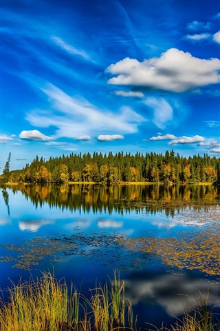iPhone Wallpaper Norway, lake, trees, water reflection, blue sky, nature landscape