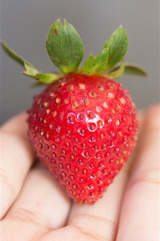 iPhone Wallpaper Strawberry in hand