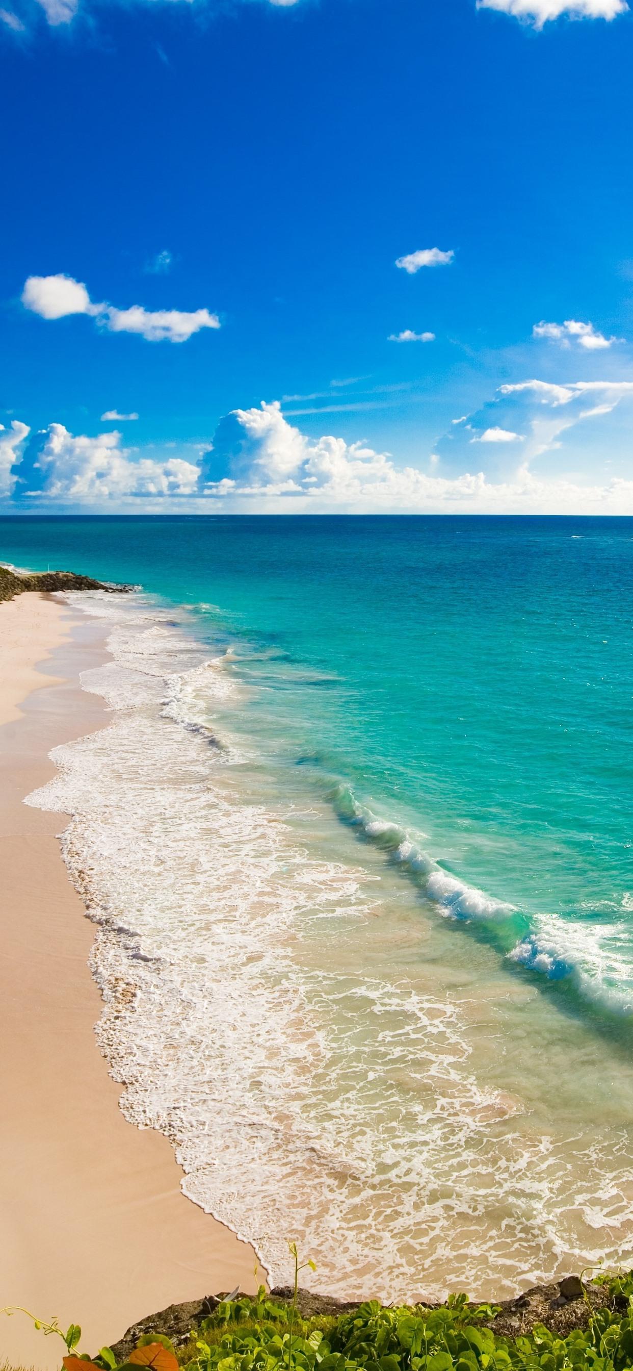 Beach Blue Sea Sunshine Tropical 1242x2688 Iphone Xs Max